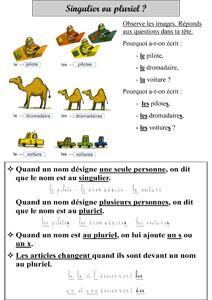 CE1 - Singulier / pluriel ~ La Classe des gnomes