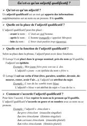 L Adjectif Qualificatif Sequence 1 Pour Des Cm La Classe Des Gnomes