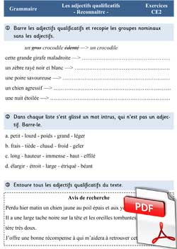 L'adjectif qualificatif - exercices CE2