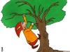 PoZ grimpe aux arbres